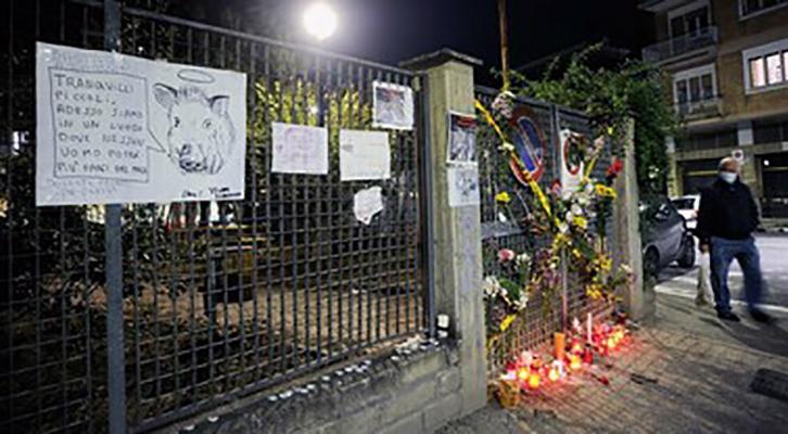 Cinghiali uccisi a Roma. La Bbc e l'outing di Roma Natura