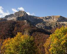 Terminillo. La Regione Lazio vuole distruggere 17ha di bosco secolare