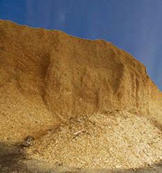 Le polveri di un impianto biomassa nella campagna eugubina