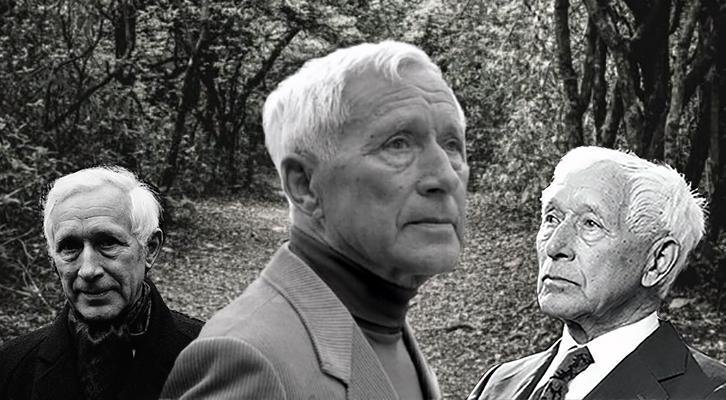 Ernst Jünger, Klaus U. Leistikow, Mantrana, Mimesis Edizioni