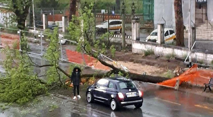 L'albero cade <br>e sfiora l'autovettura
