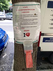 Deiezioni canine vs senso civico. I cartelli sugli alberi di viale delle Medaglie d'Oro