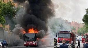 Flambus Atac. Il 774 brucia dinanzi allo Spallanzani