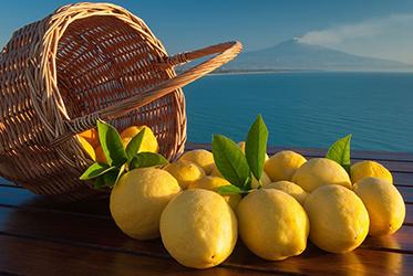 Il limone è un buon alleato della pelle